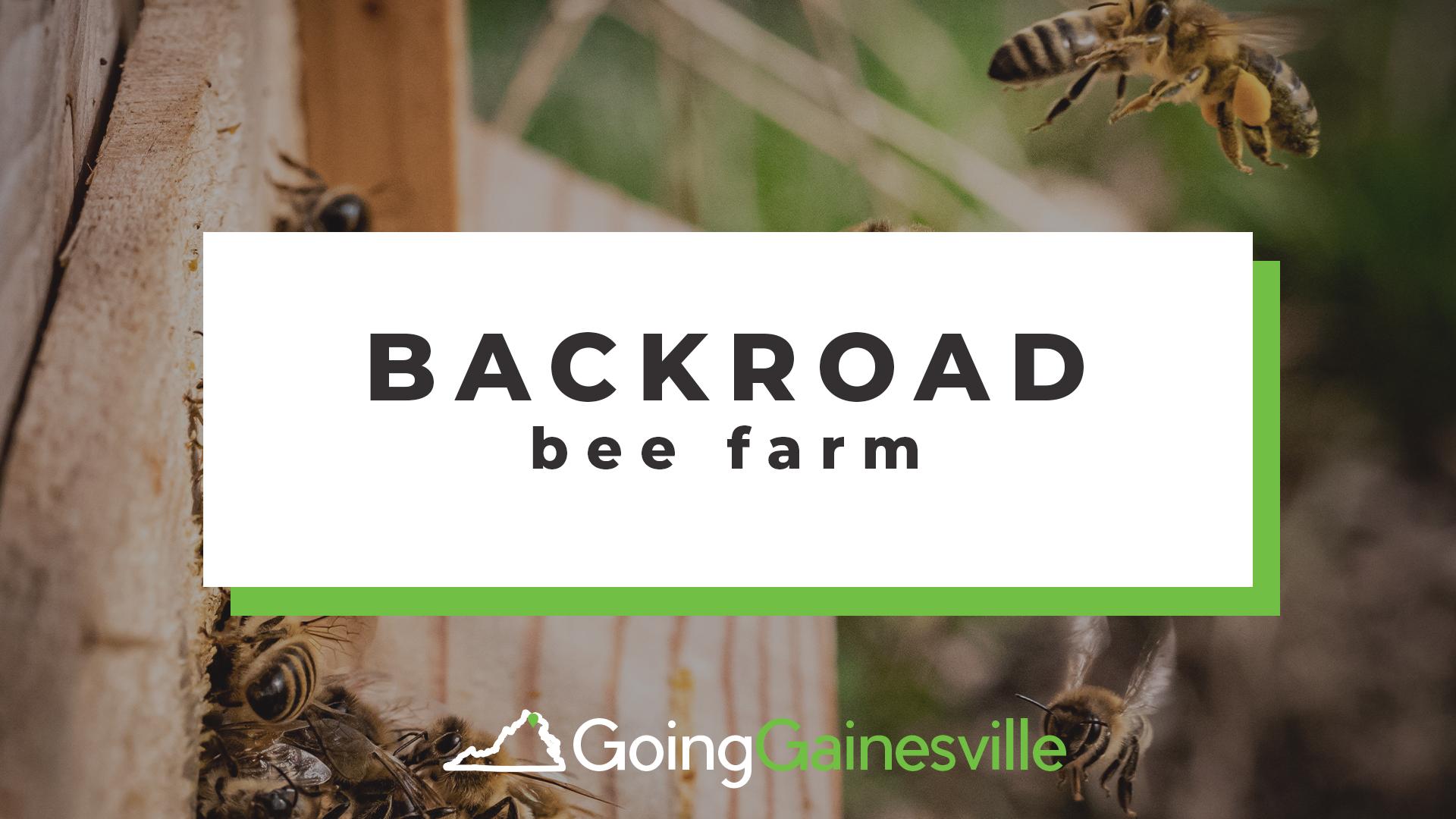 Back Road Bee Farm
